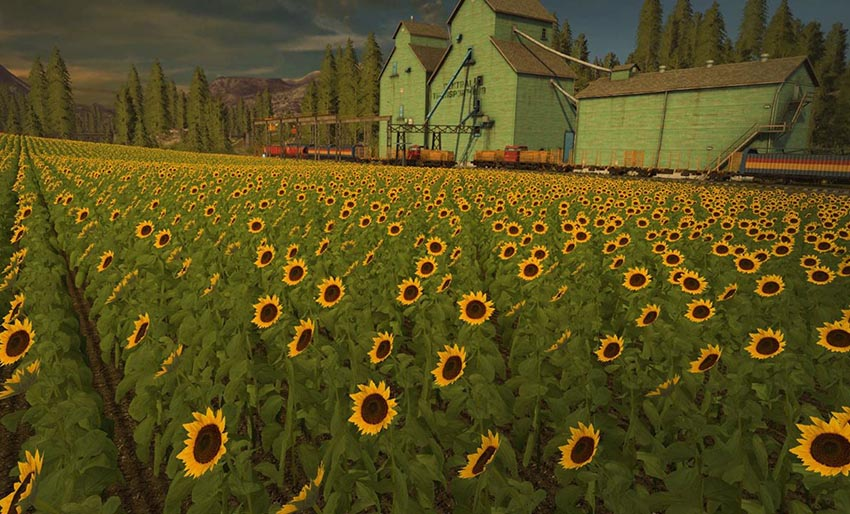Farming Simulator 17 – New Crops