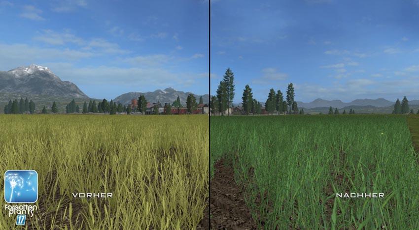 Forgotten Plants Wheat Barley V 1.0