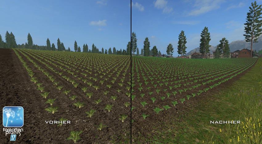 Forgotten Plants Sugerbeet Potatoes v 1.0