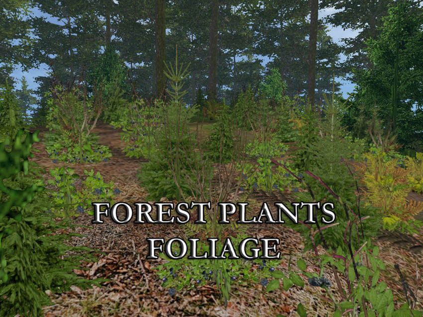 FOREST PLANTS FOLIAGE V 1.0