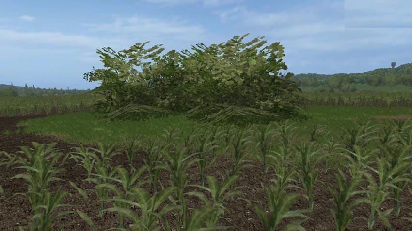 Placeable big Bush V 1.0