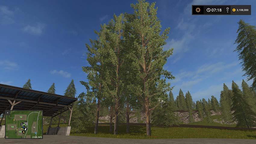 Tall pine trees v 1.0