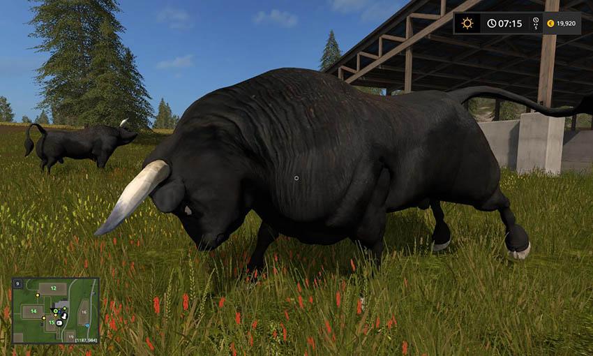 Black Bull v 1.0