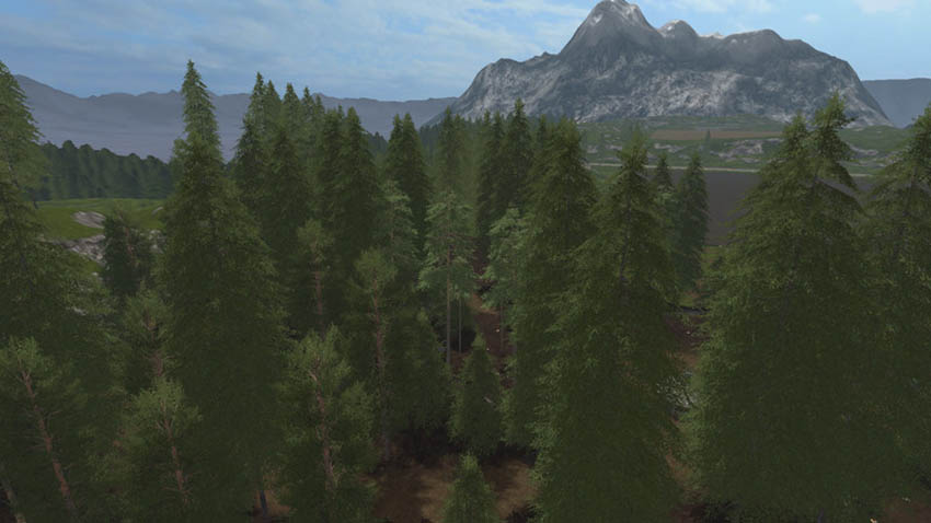 Placeable Pine Standard Set v 1.0