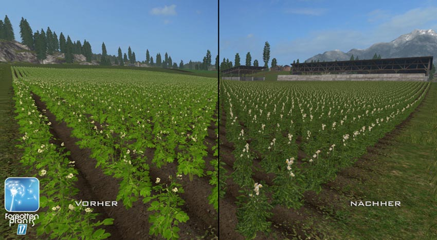 Forgotten Plants Sugerbeet Potatoes v 1.0