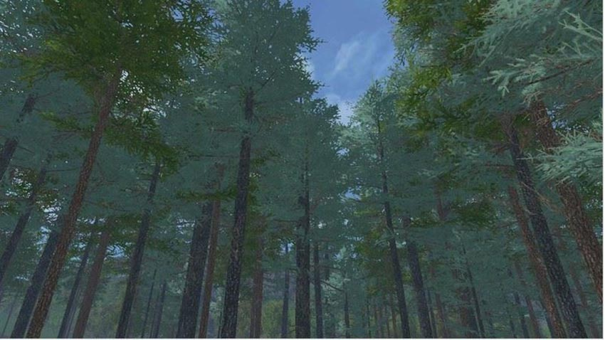 Placeable blue spruce V 1.0