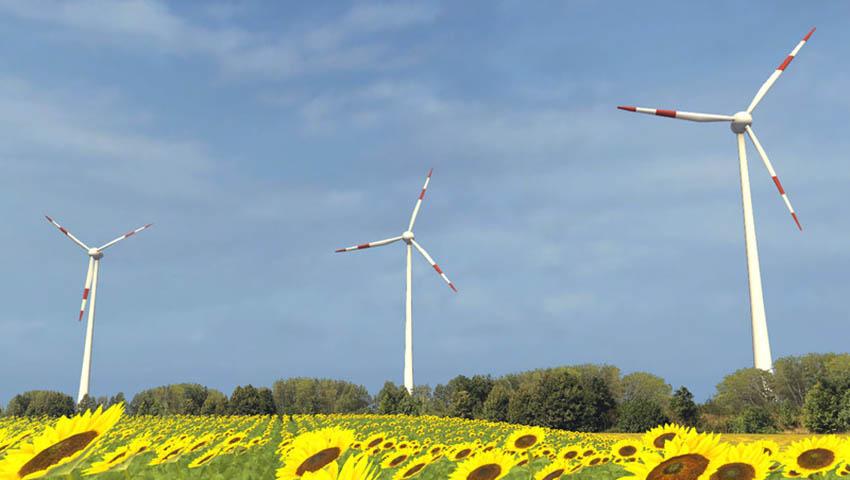 Euro Farms V 1.0