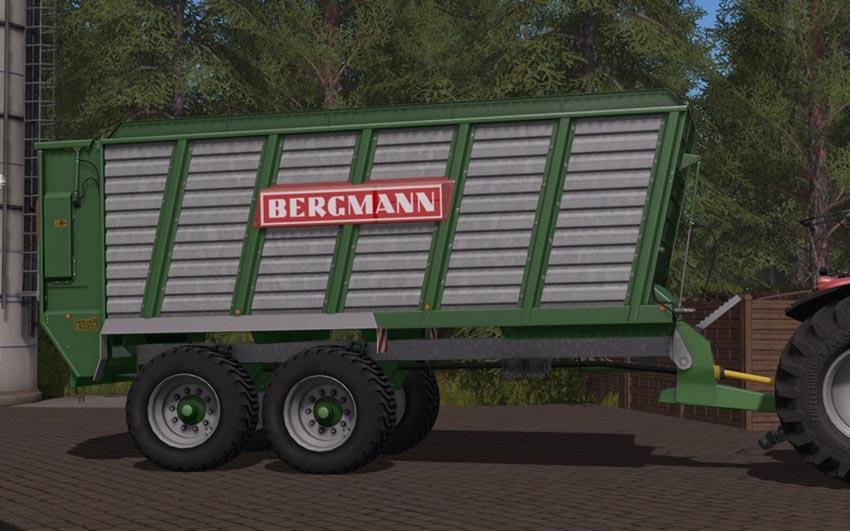 BERGMANN HTW 40 V 1.0