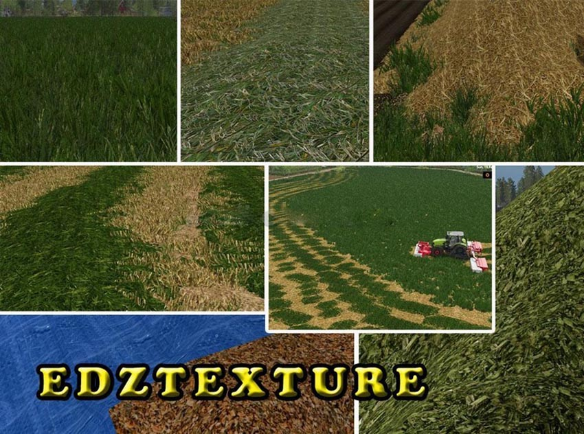 Grass texture fillplanes foliage and Terrain Ground v 1.0