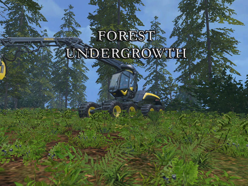Forest undergrowth V 1.0