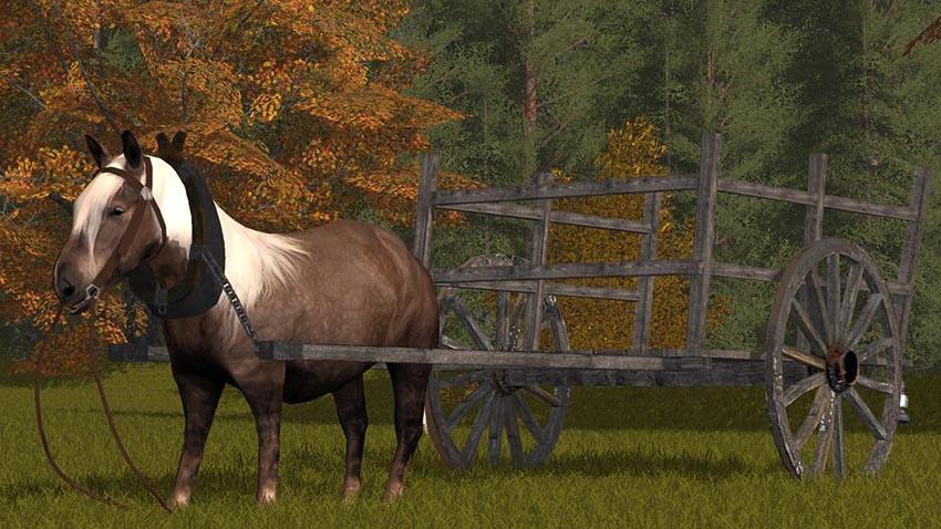 Rideable Pony v 1.0