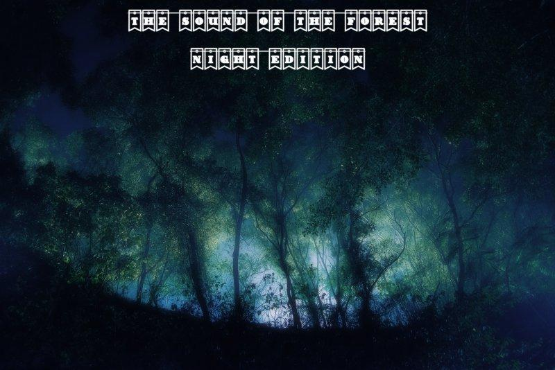 The Sound of the Forest (Night Edition) v 1.0